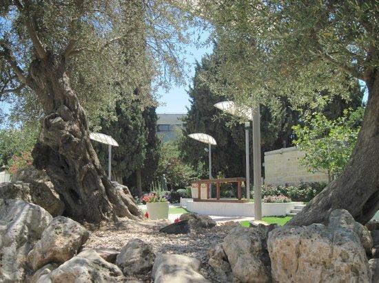 Hotel Ramat Rachel Restaurant: Ambiente externo 3