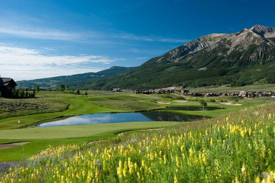 The Club at Crested Butte: Wildflowers scattered amongst the course
