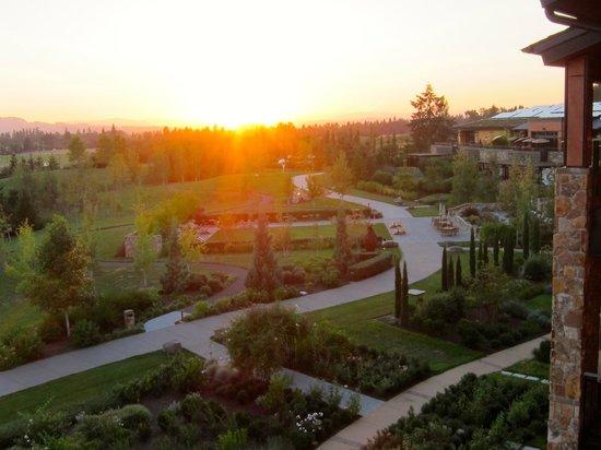 Allison Inn & Spa : sunset at the Allison