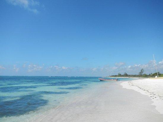 Pavoreal Beach Resort Tulum Lugar Para Descansar