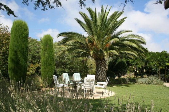 Chambres d'hôtes Mas Orfila : Sous les palmes