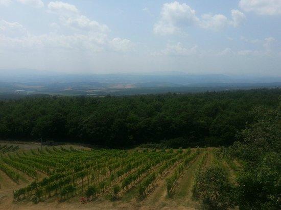 Le Ragnaie: View