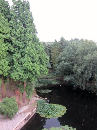 Buckatree Hall Hotel: view from room
