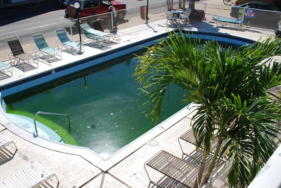 Surfside Motel: Green Pool, unswimable