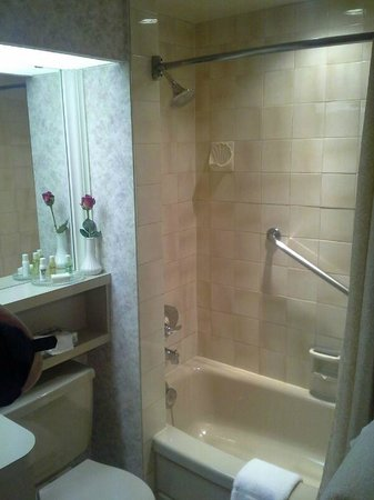 Royal Scot Hotel & Suites: Bathroom