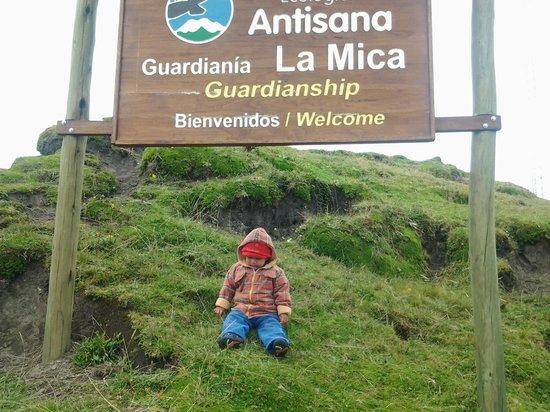 Antisana Ecological Reserve: segundo control