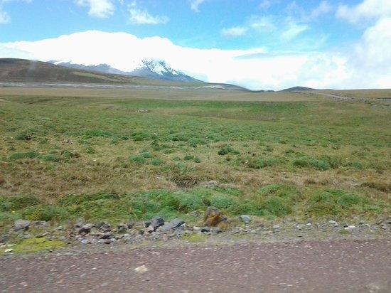 Antisana Ecological Reserve: volcan antisana