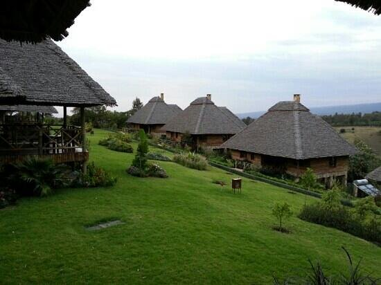 Neptune Ngorongoro Luxury Lodge: afueras del hotel