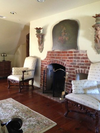 The Annapolis Inn: Fireplace - Will stay in Winter next time so I can use!