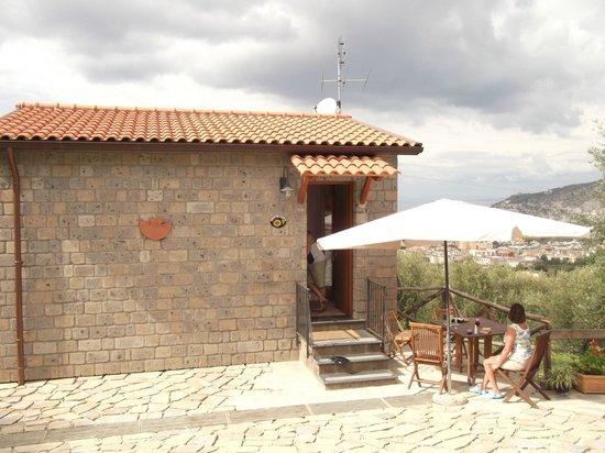 Agriturismo L'Olivara: Apartment