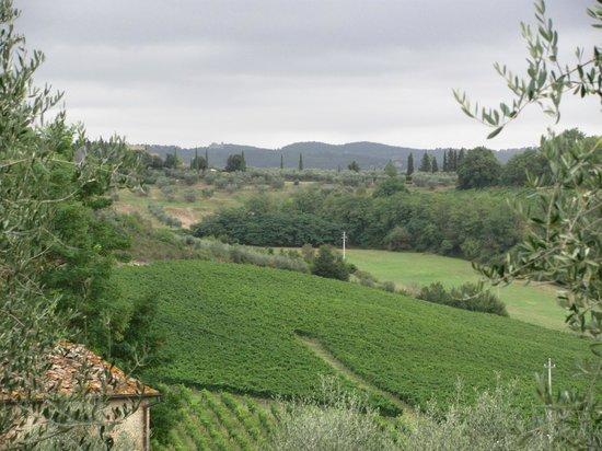 Farm House La Moraia: Gorgeous-ness All Around!