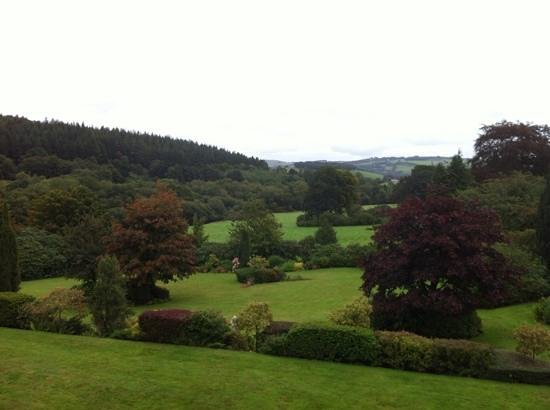 The Falcondale Hotel: room with a view