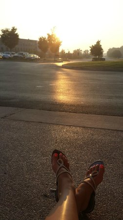 Renaissance Indianapolis North Hotel: Watching the sunrise...beautiful!