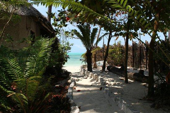 Muba guest house: Garden view