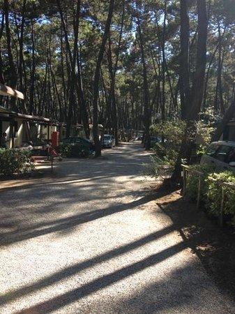 Camping Baia Verde: baiaverde