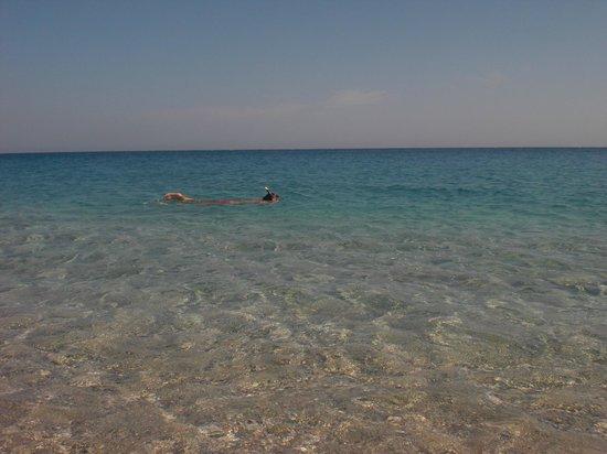 Playa de los Muertos : Snorkel