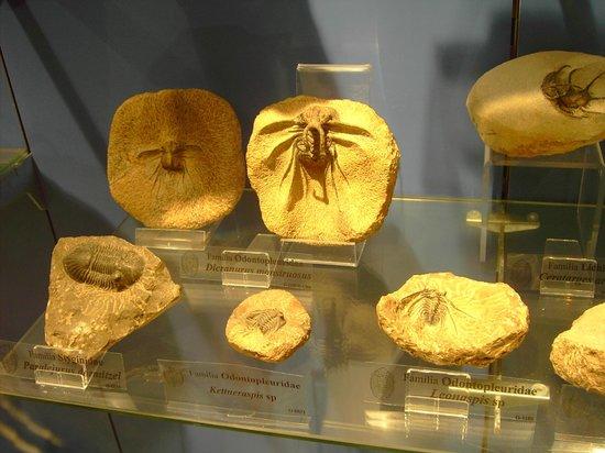 Museo Maritimo de Asturias
