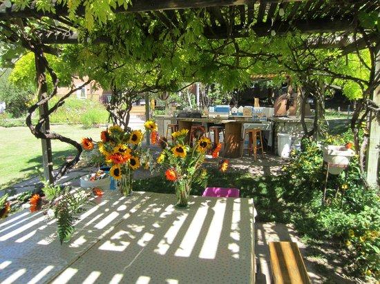 Rancho Manzana: arbor perfect for bar and pre-dinner mingling