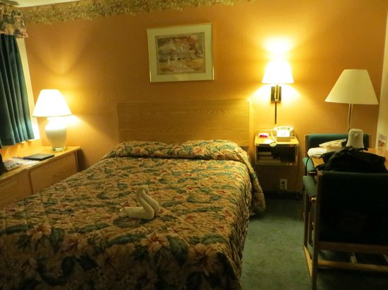 Mt. Rushmore's White House Resort: Small room, with lots of amenities!