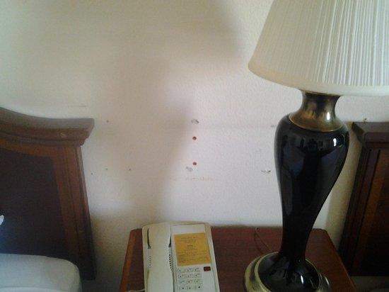 Bokai Garden Hotel : holes in the wall