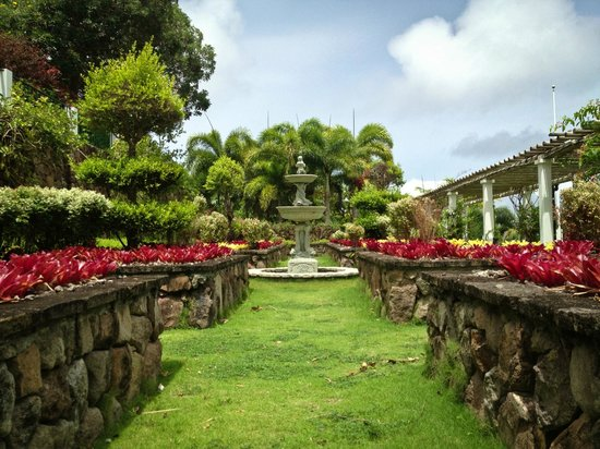 The Vine Garden - Picture of Botanical Gardens of Nevis, Nevis ...