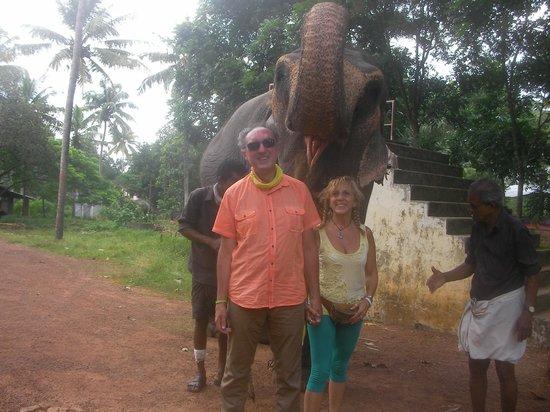 Green Villa Garden Home & Guest House: Primo piano con l'elefante