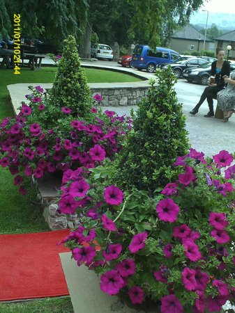 Romneys: Flowers and red carpet