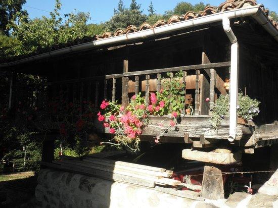Alesga Hotel Rural : Horreo asturiano en la finca del hotel