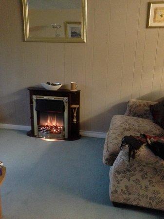 Torcroft Lodges: Heißluftkamin