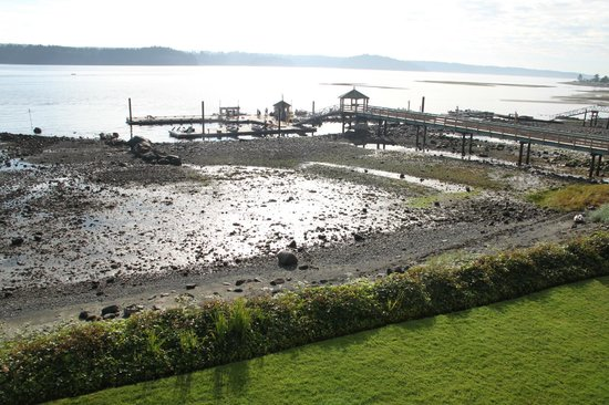 Painter's Lodge: docks