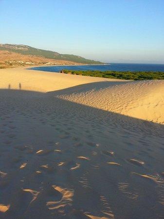 Hostal La Hormiga Voladora: View to hotel from Sand Dune