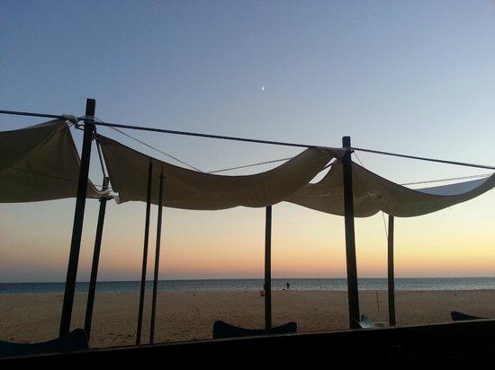 Hostal La Hormiga Voladora: Beachside bar next to hostel