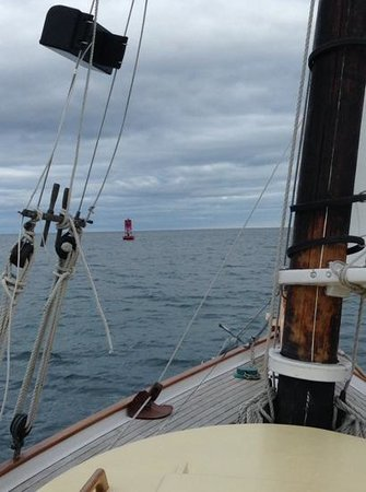 Sail Acadia : bell buoy off s'west harbor