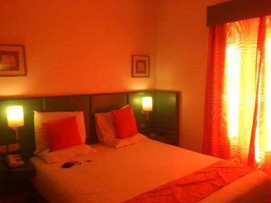 Turtle's Inn : Room