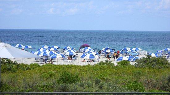 Marriott Stanton South Beach: Le plaisir