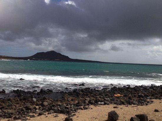 Melia Tortuga Beach Resort & Spa: Shark bay
