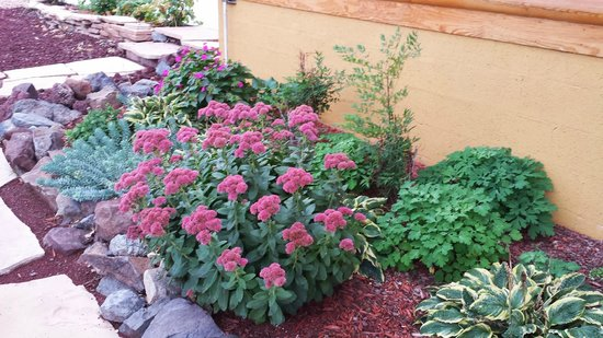 Grand Living Bed & Breakfast: beautiful landscaping