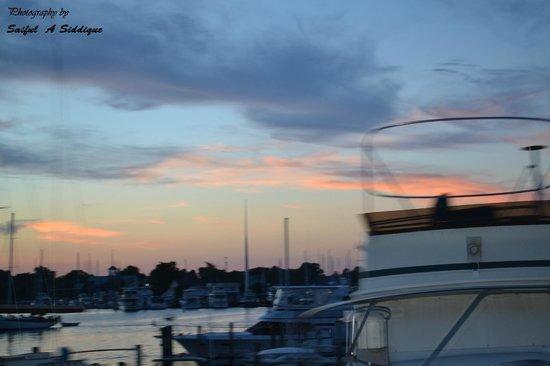 Spring Cove Marina: Simply superb!!