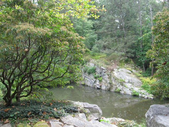 Manitoga / The Russel Wright Design Center : view of water filled quarry swimming pool and dragon rock