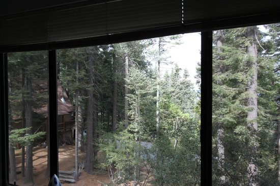 Yosemite's Scenic Wonders Vacation Rentals: Fiske Cabin - view from our bedroom