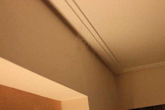 DoubleTree by Hilton Hotel Goa - Arpora - Baga: Spider Web