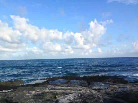 Occidental at Xcaret Destination: El romper de las olas y el paisaje simplemente hermoso