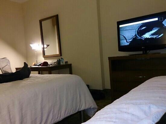 Hilton Garden Inn Panama: Habitación Standard Twin