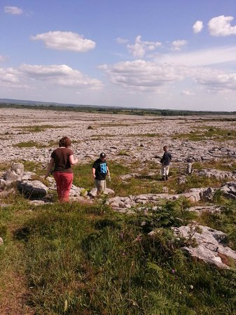 Heart of Burren Walks: On the Burren with Tony Kirby, 9 July 2013