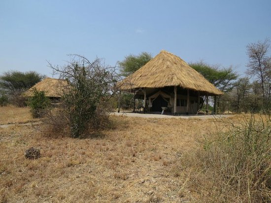 Whistling Thorn Tented Camp: Whistling Thorn Camp