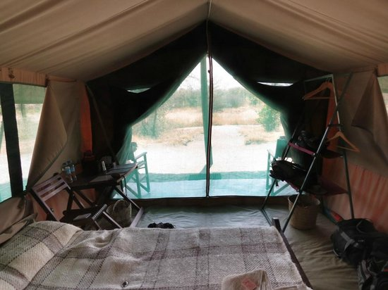 Whistling Thorn Tented Camp: Inside our tent