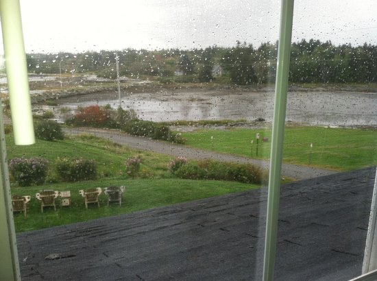 Craignair Inn at Clark Island : Rainy day from the room, 2nd floor