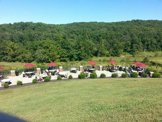 Seven Springs Winery: beautiful view