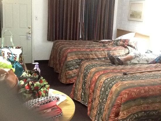Esquire Inn : Roomy. excuse my mess!