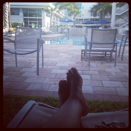 Crowne Plaza Tampa Westshore : Pool